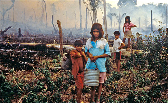 Photograph of Brazilian children standing in a recently burned field.